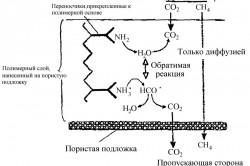 Принцип работы полимерной мембраны